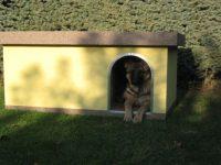 Buda pre psa L (6)